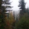 Туман на Чистопе