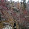 Прогулка по скалам Азов-горы