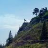 Сплав по реке Серга, июль 2007 года. Знаменитый олень