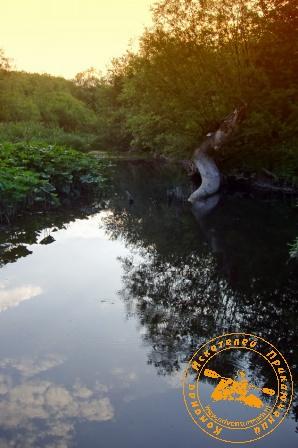 Сплав по реке Серга, июль 2004 года. Утро на Серге