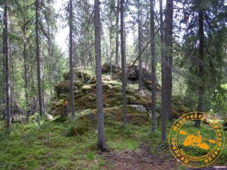 Поход на гору Кумба. Скалы в лесу