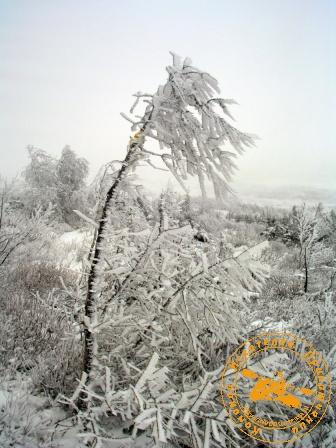 Поход на Конжаковский Камень с коллективом завода ОЦМ, ноябрь 2007 года. Ледышка